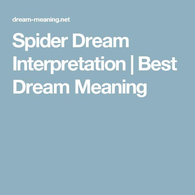Spider Dream Interpretation | Best Dream Meaning