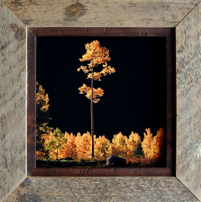 9 best frames images on Pinterest | Rustic frames, Rustic picture ...