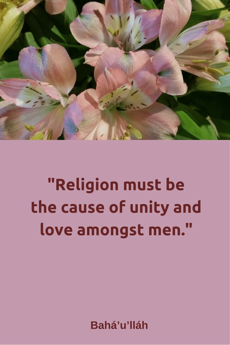 best ideas about unity in diversity diversity religion must be the cause of unity and love amongst men bahaacute