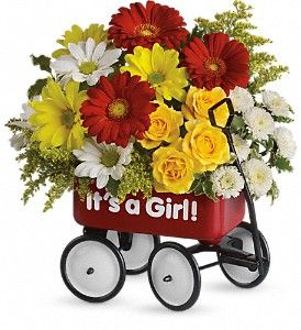 Baby's Wow Wagon by Teleflora - Girl in Brunswick GA, The Flower Basket
