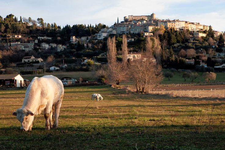 AMAZING GRAZING | The village of Callian