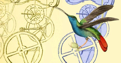 "The Hummingbird Effect: How Galileo Invented Timekeeping and Forever Changed Modern Life |  the combinatorial nature of creative breakthroughs- Johnson terms these complex chains of influences the ""hummingbird effect,"" named after the famous ""butterfly effect"" concept from chaos theory - change as imperceptible as the flap of a butterfly's wings can result in an effect as grand as a hurricane far away"