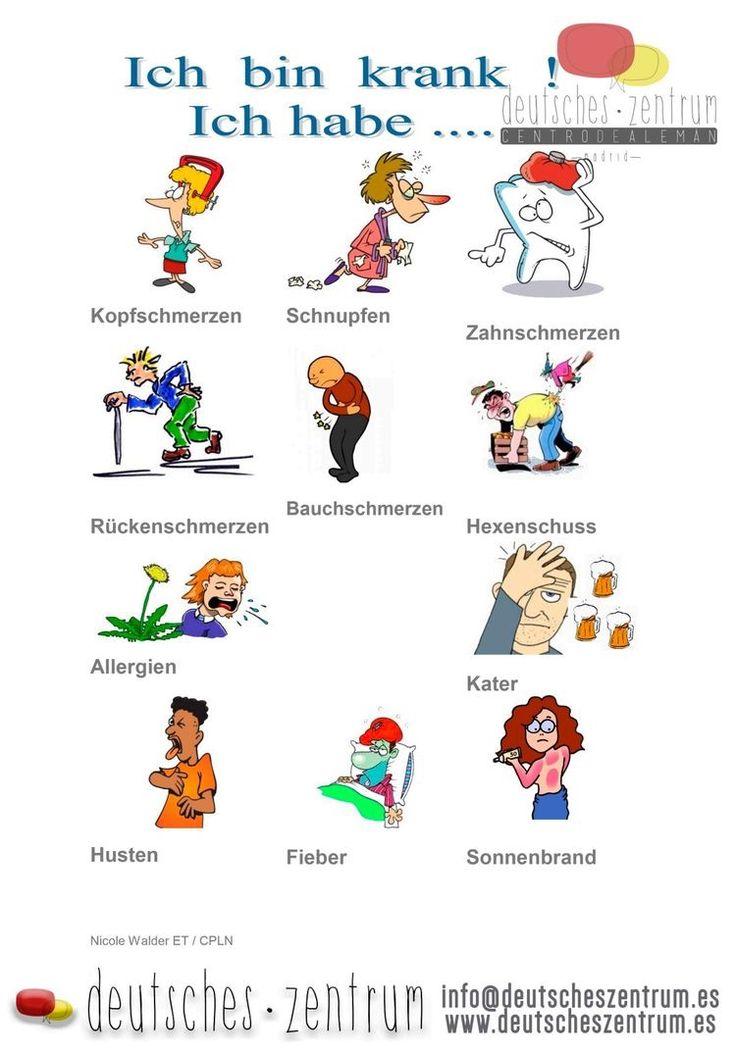 Учим немецкий в картинках