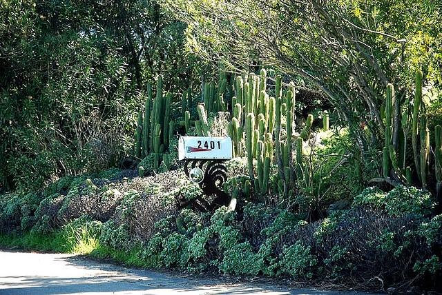 Kokopelli mailbox and cactus in Ramona, CA