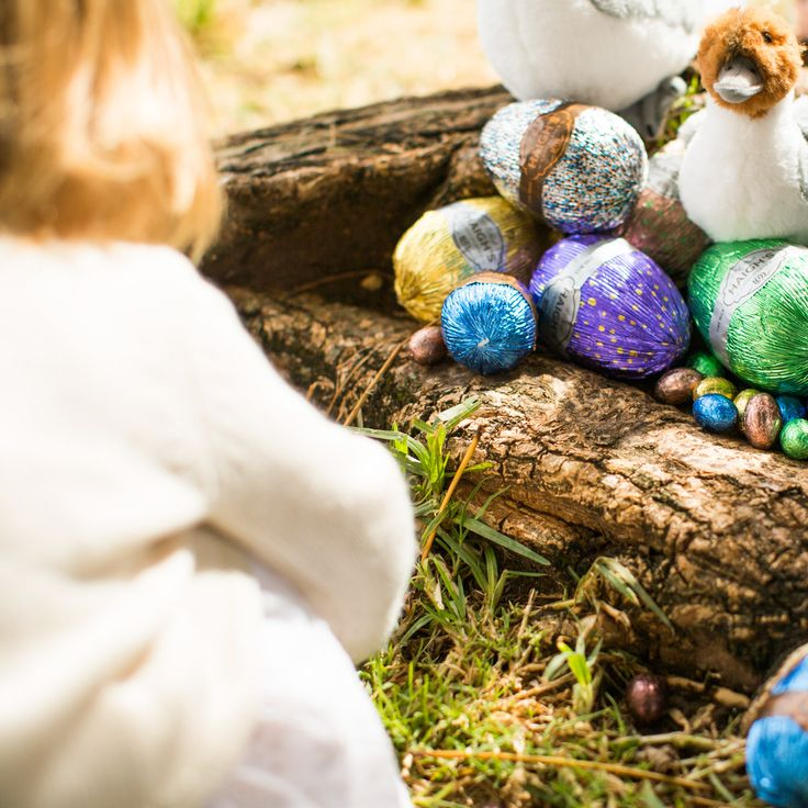 Create your own Easter egg hunt this Easter. Haigh's Easter eggs are hand foiled premium milk and dark chocolate available in 8 different sizes.