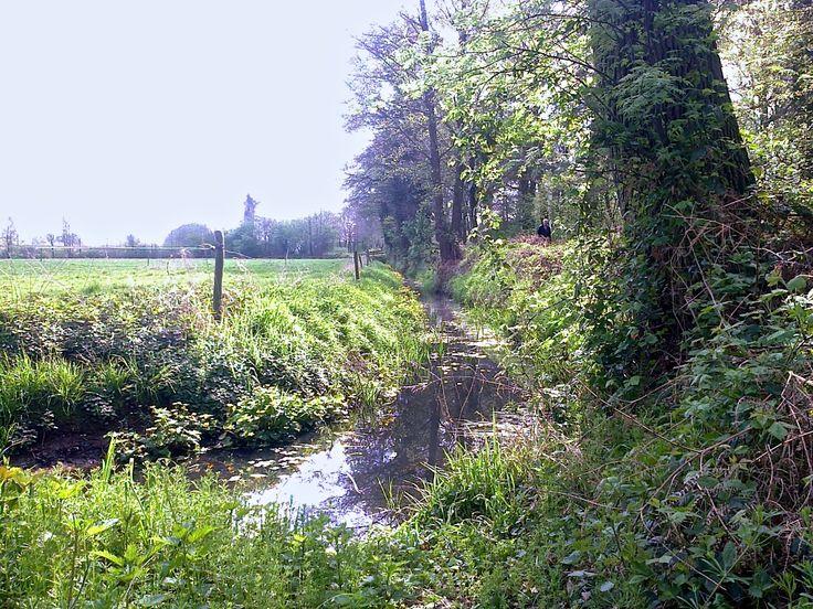 2014-04-13 Prachtige sloot met dotterbloemen langs de fraaie Linde-route