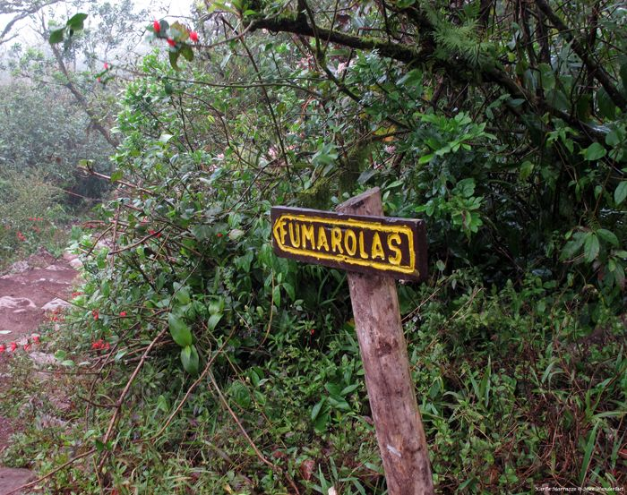 Hiking through the cloud forest of Nicaragua's Mombacho Volcano.