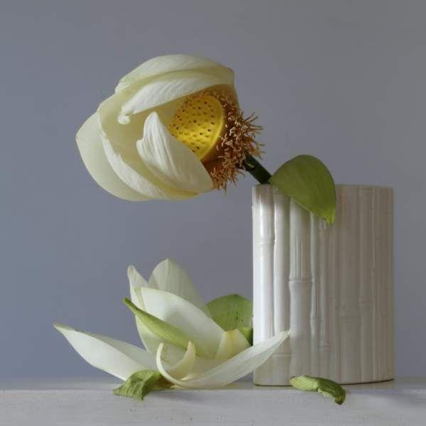 Emma Bass, floral designer