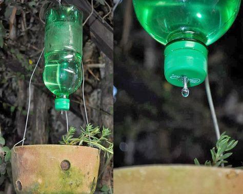 Quando sair de férias e não tiver quem regue suas plantas, utilize uma garrafa plástica de refrigerantes com uma rosca. Faça um furo dosado...