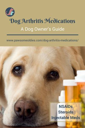 Dog Arthritis Medications - Using NSAIDs to Reduce Pain & Inflammation. #olddogs #dogcaretips  #dogcareandhealth #dogcareideas #doghealth #dogarthritis #DogMedications #dogmeds #dogmedicine