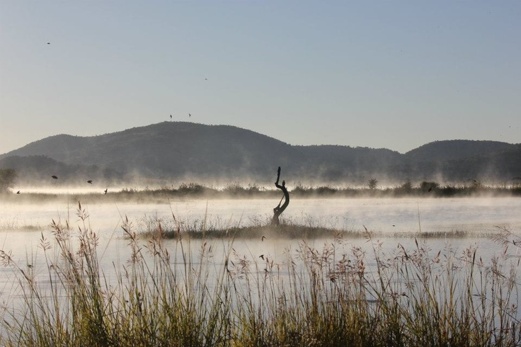 Pilanesberg 2012