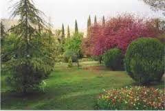 Risultati immagini per giardino eram iran
