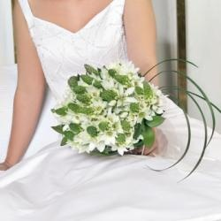 Fiftyflowers.com - Wedding flower box.  Would need 10 small pieces (6 boutonnieres, 4 corsages), 16 large