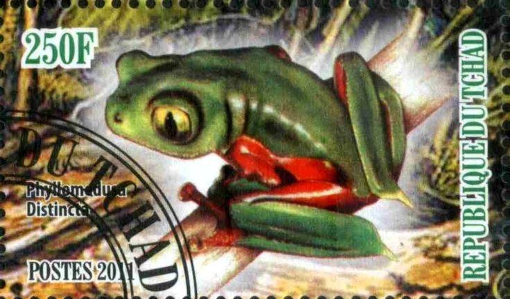 Stamp: Phyllomodusa Distincta (Cinderellas) (Chad) Col:TD 2011-05/2