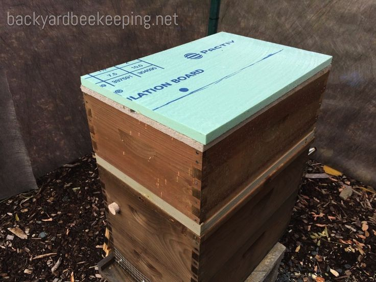 A rigid insulation board sits on a homasote board, which sits on a langstroth hive.