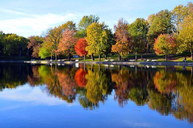 Autor: Leandro Vieira/DF Foto Câm. Digital: Cores do Outono Local: Parc La Fontaine - Montreal - Quebec - Canadá