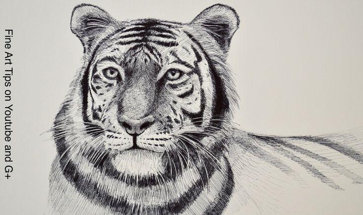 How to Draw a Tiger - Tiger Head With Marker  Mijn eerste idee was om een tijger te maken die dan overloopt in een bos maar ik heb nu een ander idee dat ik ga uitwerken dus dit filmpje ga ik niet meer gebruiken bij deze tekening.