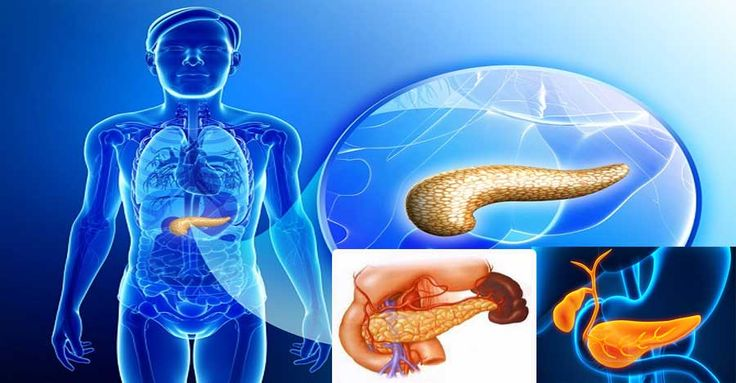 el-pancreas