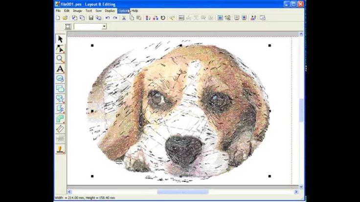PE-Design. PhotoStitch 1. Color.