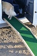 25 Best Ideas About Dog Ramp For Car On Pinterest Facts