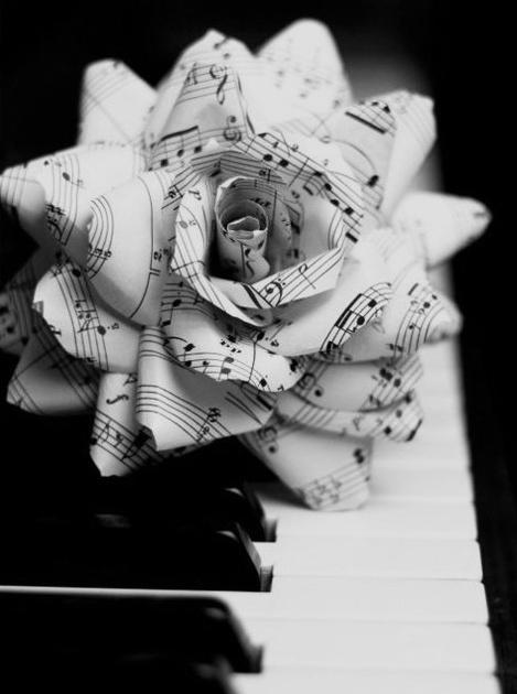 歌う薔薇。