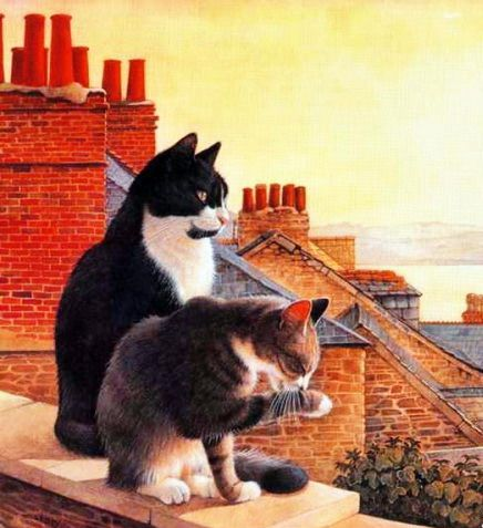 Neighbourhood Cats  © Lesley Anne Ivory