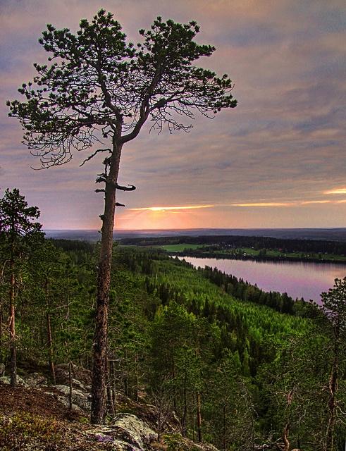 Skellefteå by ~Frida*~, via Flickr