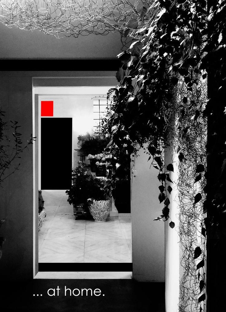 ...at home.  - fioreria donaflor - thiene - vicenza