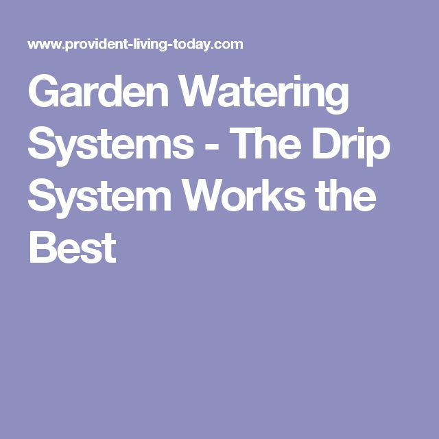 Garden Watering Systems - The Drip System Works the Best