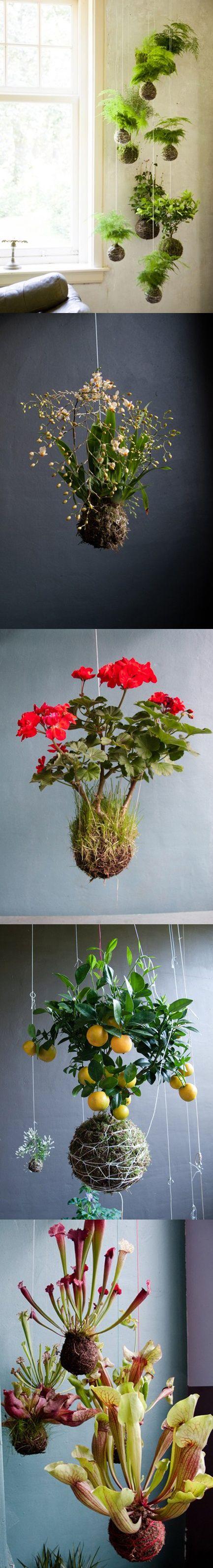 """Foto """"pinnata"""" dalla nostra lettrice Carla Covasce, blogger di Craft Patisserie Flower basket ideas for Spring"""