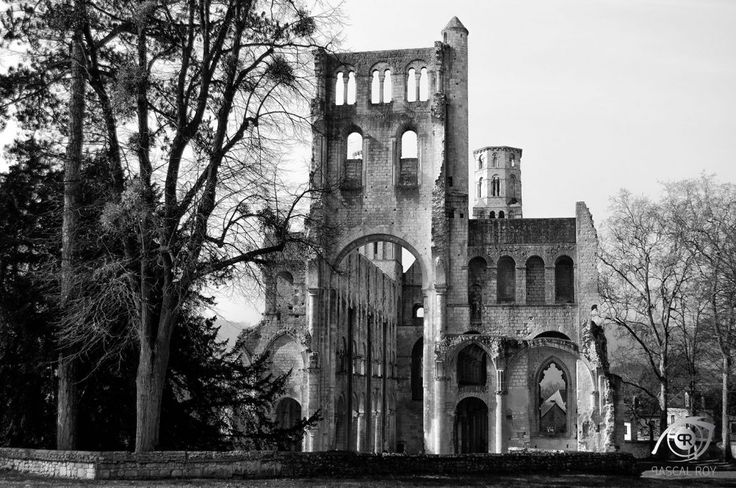 Abbaye de Jumièges – Pascal Roy