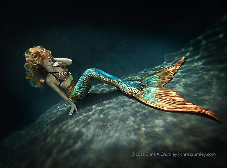 Mermaid Tails For Sale To Swim In | The tails can be purchased here for a mere $1,300.