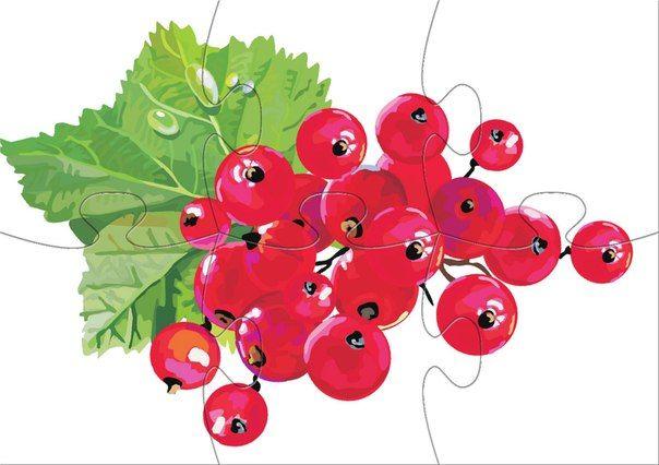 * Fruit puzzel! 6 -10