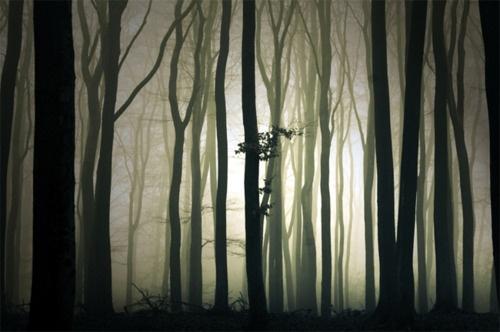 Mysterious Light by Theo Peekstok