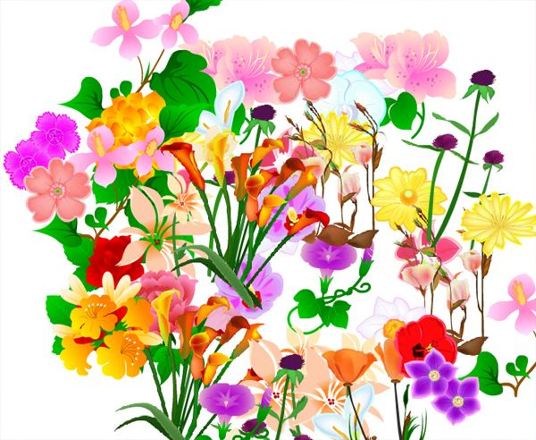 Interactive flowers website : >>>>See blog<<<<<<