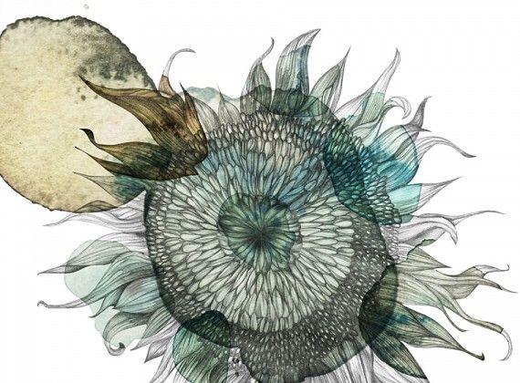 Piet Boon Styling by Karin Meyn | Sun flower illustration