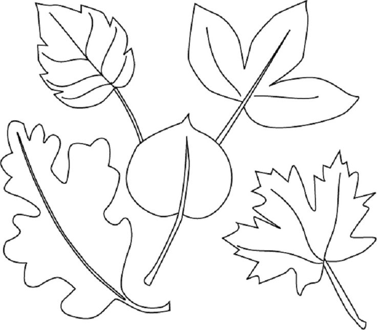 spring leaves coloring pages | Leaf coloring page, Free ...