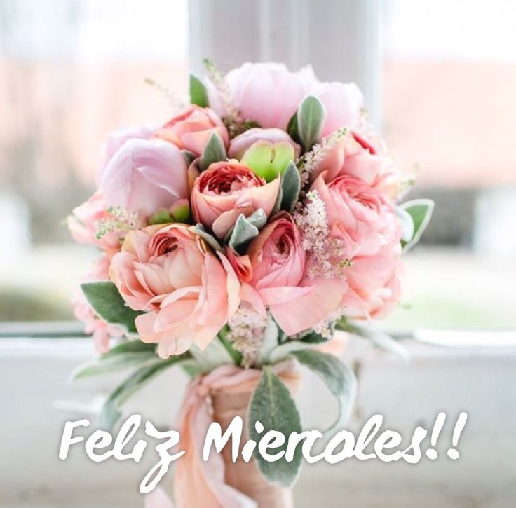 Feliz Miércoles / Feliz Día / Wednesday / Miércoles / Happy Wednesday  / Happy Day / Que pases un lindo día / Buenos Días / Good Morning / Bendiciones