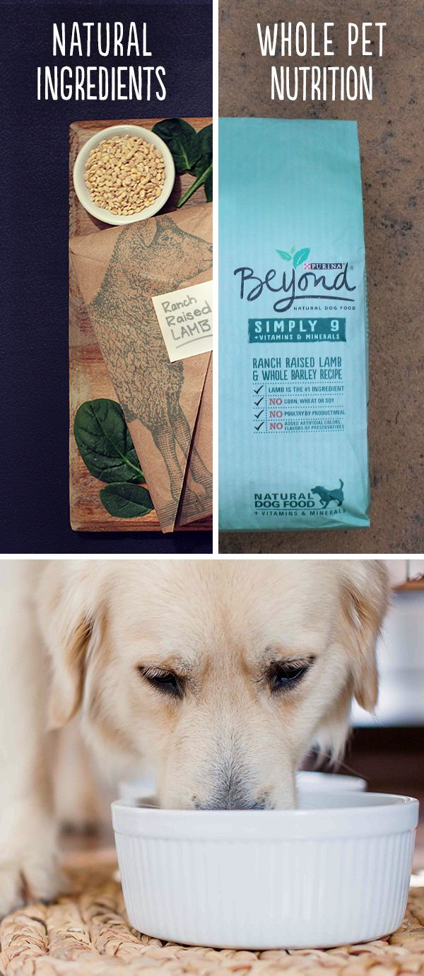 What goes into the bag is an important consideration for choosing a natural dog food, but you should also be sure that everything is balanced for whole pet nutrition. Whether you're looking for a limited ingredient dog food, or a grain free dog food option, make sure that the label starts with natural ingredients, then check to see if it has been formulated by experienced pet nutritionists for 100% complete and balanced health.