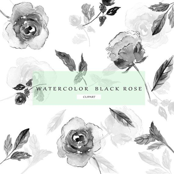Floral Clip Art Watercolor Flower Clipart Black And White
