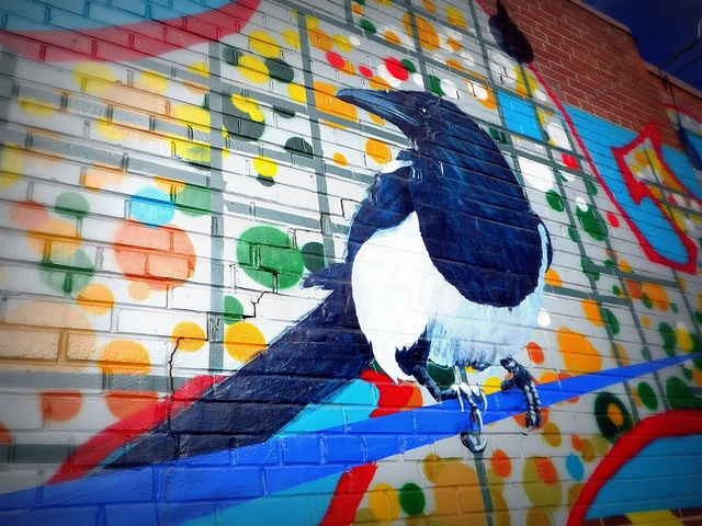 A close-up of one of the magpies on the mural NE of downtown #yeg,