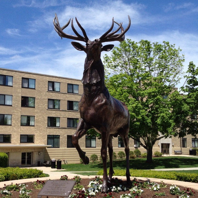 Fairfield University!