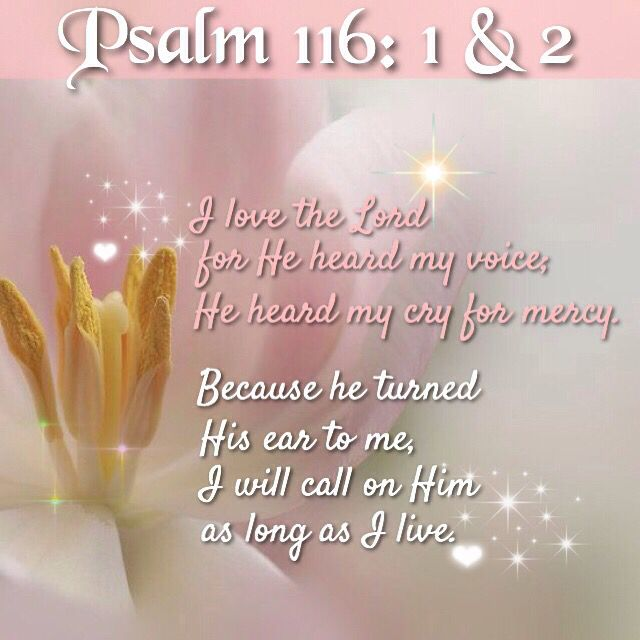 116 2: 4344 Best Images About The Book Of Psalms On Pinterest