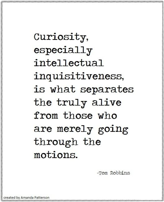Quotable - Tom Robbins                                                                                                                                                                                 More