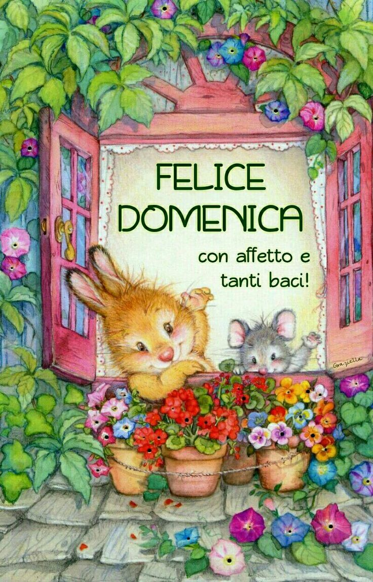 29 Best Images About Immagini Buona Domenica On Pinterest