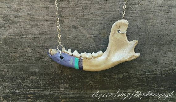 Hey, I found this really awesome Etsy listing at https://www.etsy.com/listing/471052919/real-bones-taxidermy-jewelry-oddity