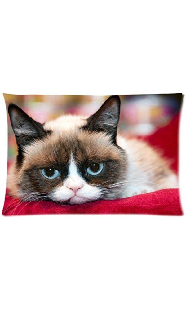 Soft Pillow Case Cover Decorative Sofa Throw Pillow 20*30 Inch (Twin sides)Zippered Pillowcase Funny Cute Grumpy Cat Pattern Popular Design Great Gift For Valentine's Day Best Price