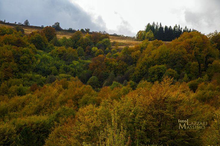 Alta Val Staffora (PV) autunno 2016. Oltrepo pavese. Foto Massimo Lazzari srls - S.Martino Siccomario PV