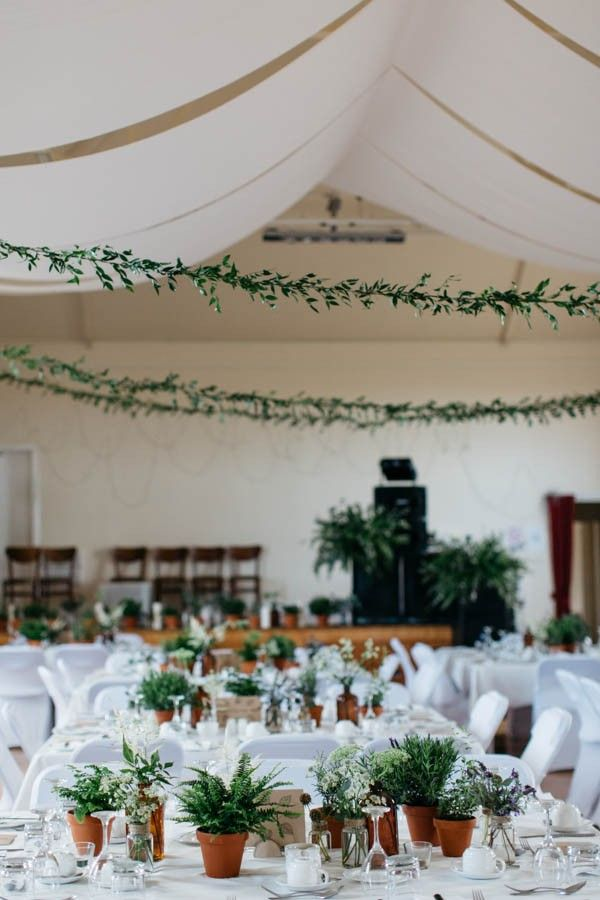 Love the idea of using Terra Cotta potted plants as wedding table decor | Caro Weiss Photography
