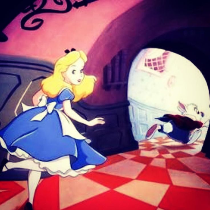 Follow Alice as she's chases the white rabbit all the way to @saporiummarkets See you there! @saporium #markets #sydney #weekend #saturday